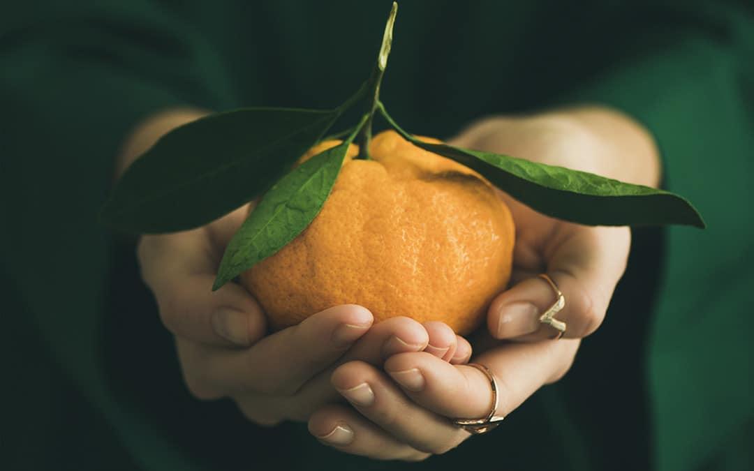 clémentine fruit hiver
