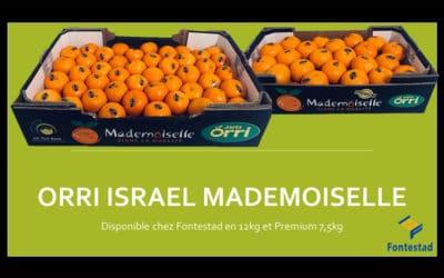 Les mandarines sont aussi notre spécialité !
