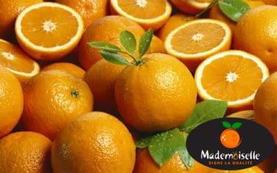 Connaissez-vous nos oranges Valencia Late ?